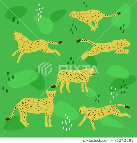 獵豹插畫圖案 75242389