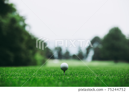 高爾夫球 75244752