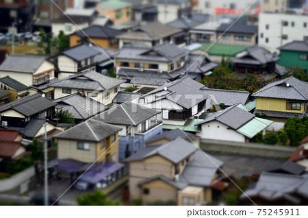 微型房屋 75245911