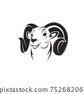 Vector of bighorn ram head on white background. Easy editable layered vector illustration. Wild Animals. 75268206