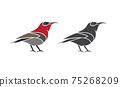 Vector of crimson sunbird design on white background. Easy editable layered vector illustration. Wild Animals. 75268209