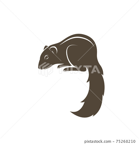 Vector of chipmunk design on white background. Easy editable layered vector illustration. Wild Animals. 75268210