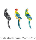 Vector of parrot design on white background. Easy editable layered vector illustration. Birds. Animals. 75268212