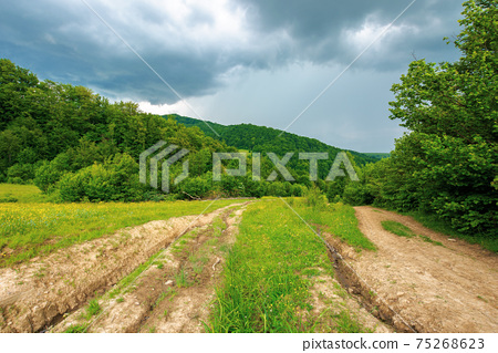 dirt road through forested countryside. beautiful summer rural landscape in mountains. adventure in nature scenery before the storm 75268623