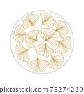 Ginkgo biloba leaves 75274229