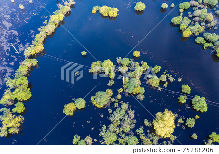 Scenic aerial view of high water in spring time 75288206
