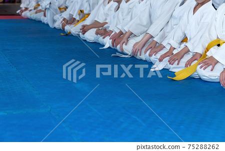 Children in kimono are sitting on tatami 75288262