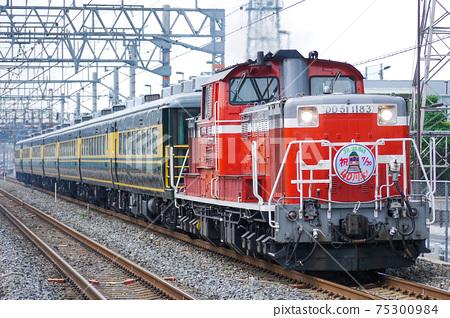 DD51 Naniwa Salon Car 75300984