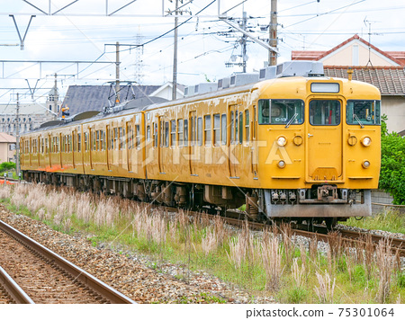 115 series C-13 formation 75301064