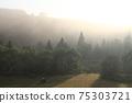 Dawn over the landscape 75303721