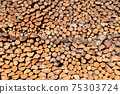 Large pile of logs 75303724
