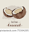 Hand drawn colorful Coconut isolated on background. 75304205