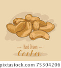 Hand drawn colorful Cashew isolated on background. 75304206