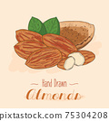 Hand drawn colorful Almond nuts isolated on background. 75304208