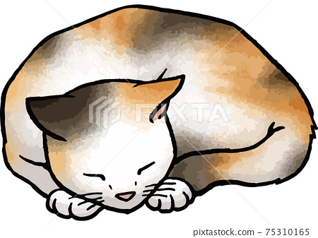 [Hand-drawn vector animal illustration material] Illustration of a calico cat sleeping curled up 75310165
