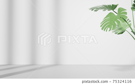 3D rendering of empty space with Monstera leaves, Abstract minimal display empty space. Geometry podium for beauty cosmetic products. 75324116