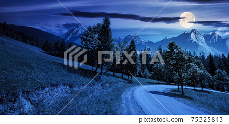 asphalt road through forested mountains at night. beautiful countryside transportation background. composite summer landscape with high tatra ridge in the distance in full moon light 75325843