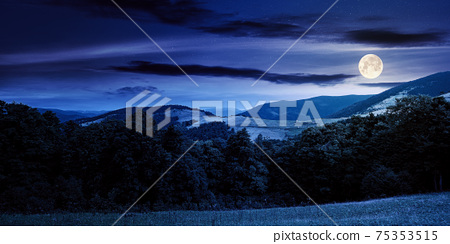 summer landscape of carpathian mountains at night. beautiful scenery in full moon light. beech forest and grassy alpine meadows on the hills. clouds on the dramatic sky 75353515
