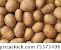 Background of a heap of potatoes close-up. Close-up potatos texture. 75375496