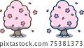 春天的櫻花樹 75381373