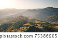 Fog sunrise at mountain village aerial. Autumn nobody nature landscape. Green spruce, leaf forest 75386905