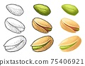 Pistachio nut with and without shell. Vector engraving color vintage illustration 75406921
