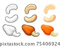 Cashew nut with fetus. Vector engraving black vintage illustration 75406924