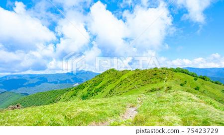 Washigamine登山(夏季):山脊線 75423729