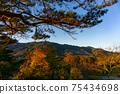 Mountain's autumn leaves 75434698