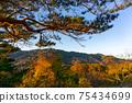 Mountain's autumn leaves 75434699
