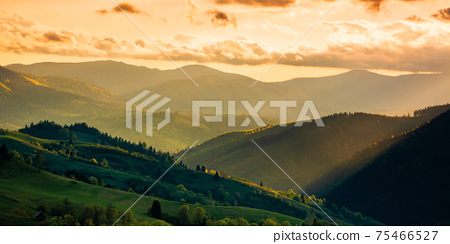 mountainous countryside scenery at sunset. dramatic sky above the distant valley. green fields and trees on the hill. beautiful nature scenery of carpathians 75466527