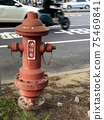 fire hydrant 75469841