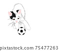 Cat and soccer ball 75477263