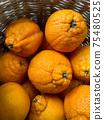 Japanese citrus orange  fruits name Dekopon in basket. 75480525