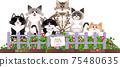 花壇貓圖 75480635