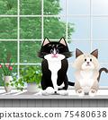 一隻貓在窗台上的插圖 75480638