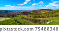 panoramic view hills Bologna italy city in colorful bright spring day with basilica of San Luca 75488348