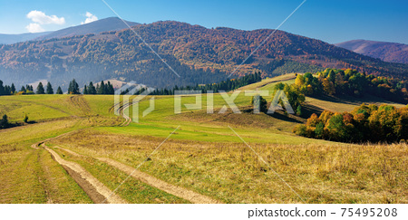 mountainous countryside in autumn. rural road through grassy pastures on hills rolling in to the distance. forest in colorful foliage. bright sunny day with bright blue sky 75495208