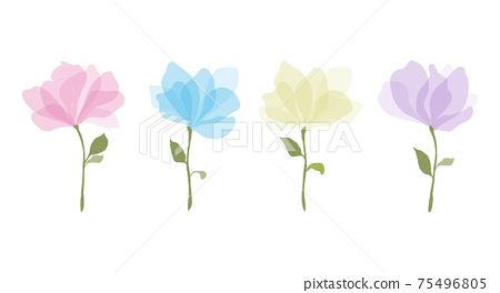 Set of colorful watercolour transparent colours style vector illustration of rose flowers with large petals and green leaves on a white background. Botanical romantic design element 75496805
