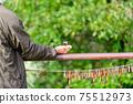 아름다운 새들이 부드러운 손에 머무는 풍경 자연의 조류 신록 이미지 풍경 75512973