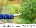 아름다운 새들이 부드러운 손에 머무는 풍경 자연의 조류 신록 이미지 풍경 75512975