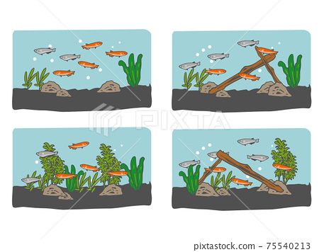 Underwater illustration of medaka 4 patterns 75540213
