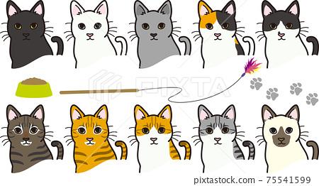 貓的各種外套顏色 75541599