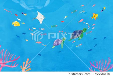 在海中 75556810
