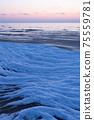Baltic Sea frozen in ice in winter 75559781