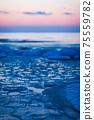 Baltic Sea frozen in ice in winter 75559782