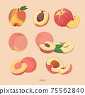 多個水蜜桃及切片水果手繪插畫 75562840