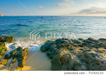 seascape on a sunny morning. summer vacation at the sea. water washes sandy beach with rocks. fluffy clouds on the sky 75564210