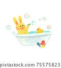 욕실에서 노는 토끼 75575823