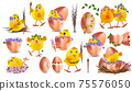 Collection of cute yellow chickens with flower. Funny cartoon chickens for your design. Easter, Spring concept. Chickens in egg with flowers. Vector illustration 75576050